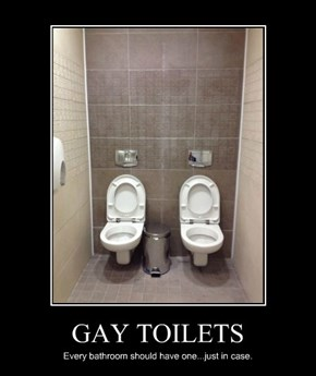 GAY TOILETS