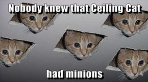 Nobody knew that Ceiling Cat   had minions