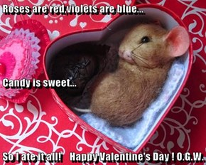 Roses are red,violets are blue... Candy is sweet... So I ate it all!    Happy Valentine's Day ! O.G.W.