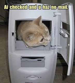 Ai  checked  and  u  haz  no  mail.