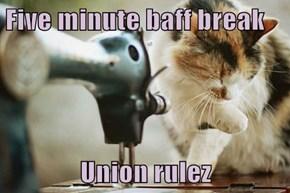 Five minute baff break  Union rulez