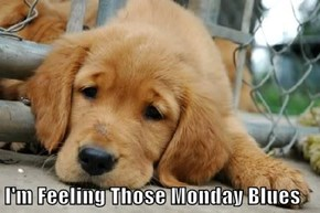 I'm Feeling Those Monday Blues