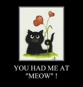 "YOU HAD ME AT ""MEOW"" !"