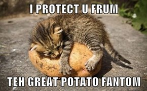 I PROTECT U FRUM  TEH GREAT POTATO FANTOM