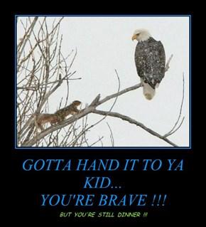 GOTTA HAND IT TO YA KID...  YOU'RE BRAVE !!!