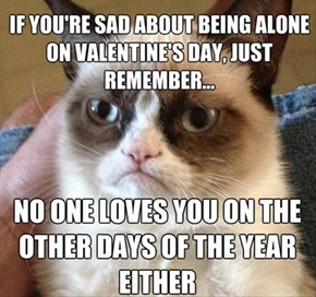 Grumpy Cat Reveals a Bitter-Sweet Reality