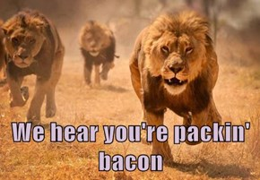 We hear you're packin' bacon