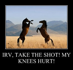 IRV, TAKE THE SHOT! MY KNEES HURT!