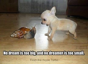 No dream is too big, and no dreamer is too small.