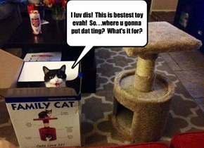 I luv dis!  This is bestest toy evah!  So. . .where u gonna put dat ting?  What's it for?