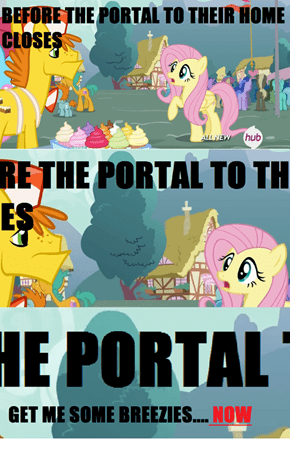 WE ARE ALMOST THEIR BRONIES! :D