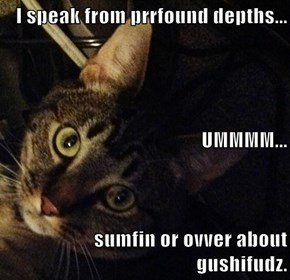 I speak from prrfound depths... UMMMM... sumfin or ovver about gushifudz.