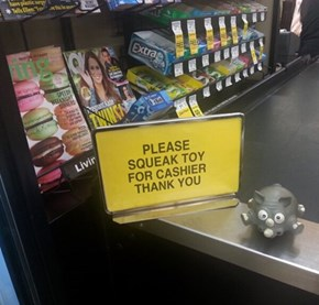 The Cashier is a Schnauzer...