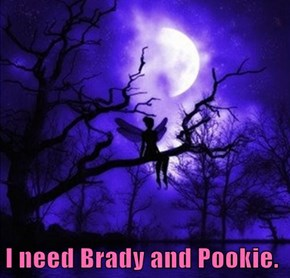 I need Brady and Pookie.