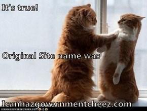 It's true! Original Site name was Icanhazgovernmentcheez.com