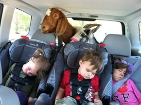 A Car Full of Tired Kids