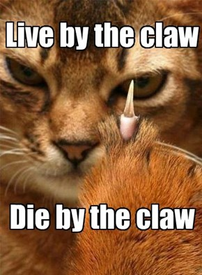 I fought the claw, and the claw won