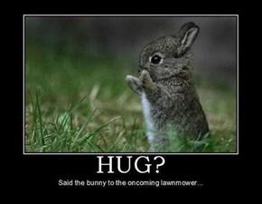 Sometimes You Just Need a Hug