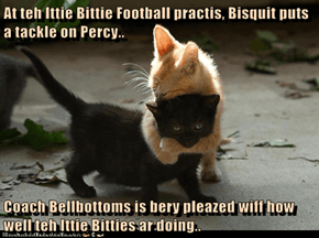 At teh Ittie Bittie Football practis, Bisquit puts a tackle on Percy..  Coach Bellbottoms is bery pleazed wiff how well teh Ittie Bitties ar doing..