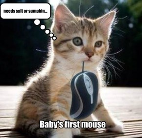 Baby's first mouse