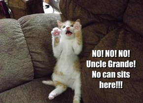 NO! NO! NO! Uncle Grande! No can sits here!!!