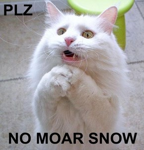PLZ  NO MOAR SNOW