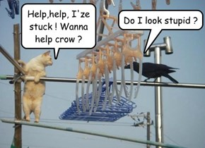 Help,help, I'ze stuck ! Wanna help crow ?