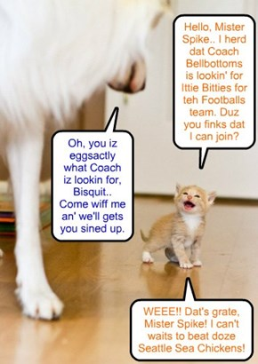Assistant Coach Spike finds a perfect new addition to teh Ittie Bittie Football team..