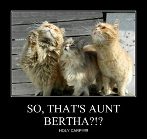 SO, THAT'S AUNT BERTHA?!?