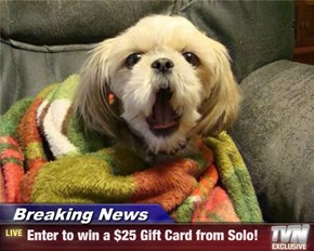Breaking News - Enter to win a $25 Gift Card from Solo!