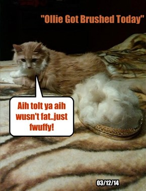 Aih tolt ya aih wusn't fat..just fwuffy!