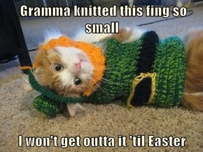 Gramma knitted this fing so small  I won't get outta it 'til Easter