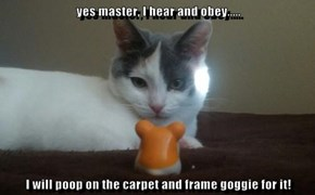 yes master, I hear and obey.....  I will poop on the carpet and frame goggie for it!