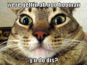 were gettin ah noo hooman  y u do dis?