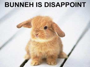 BUNNEH IS DISAPPOINT