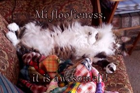 Mi floofieness,  it is awesome!!!