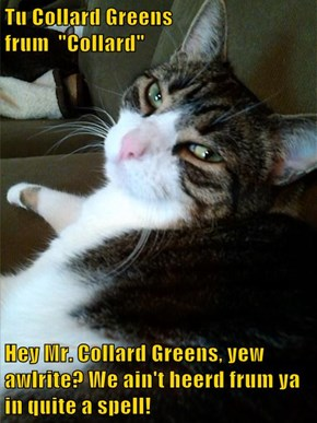 "Tu Collard Greens                           frum  ""Collard""  Hey Mr. Collard Greens, yew awlrite? We ain't heerd frum ya in quite a spell!"