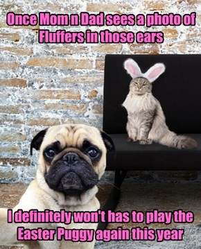 But we love the Easter Puggy!