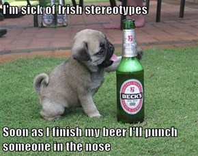 I'm sick of Irish stereotypes   Soon as I finish my beer I'll punch someone in the nose