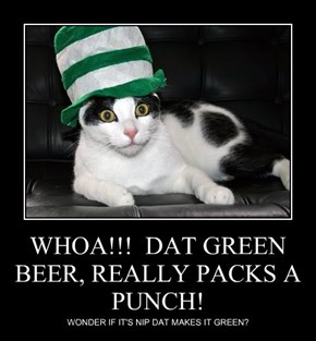 WHOA!!!  DAT GREEN BEER, REALLY PACKS A PUNCH!