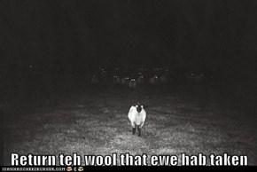 Return teh wool that ewe hab taken