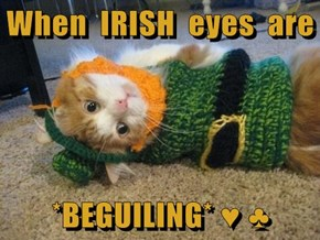 When  IRISH  eyes  are   *BEGUILING* ♥ ♣