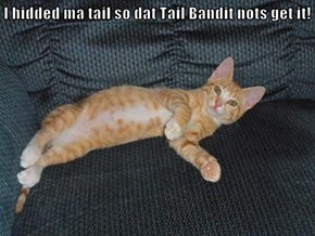 I hidded ma tail so dat Tail Bandit nots get it!