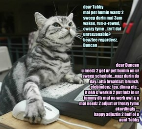 dear Tabby mai pet humin wantz 2 sweep durin mai 3am wakee, run-a-rownd, cwazy tyme ...izn't dat unreezonable? beaztee regardeez, Duncan