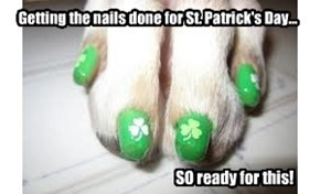 Have a Happy (and Safe) St. Patrick's Day!