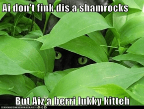 Why black kittehs are kool...