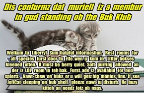 Offishul JeffCatsBookClub Memburship Kard for muriell