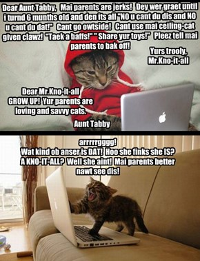 Aunt Tabby's advice nawt taken wellbai teen kitteh!