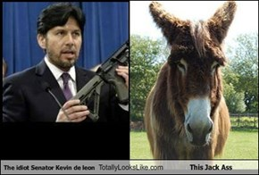 The idiot Senator Kevin de leon Totally Looks Like This Jack Ass