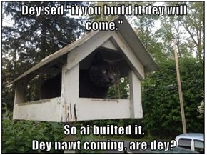 "Dey sed ""if you build it dey will come.""  So ai builted it.                                                          Dey nawt coming, are dey?"